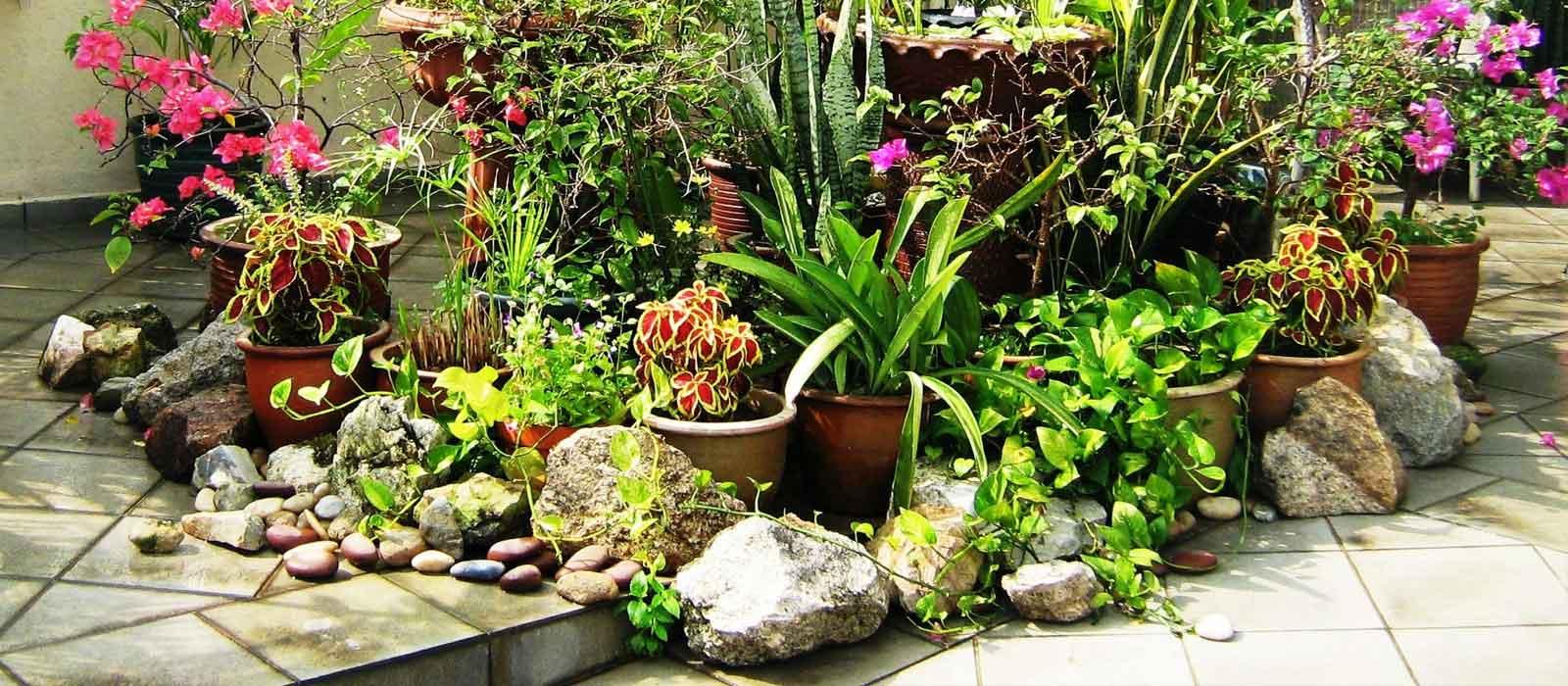Декорации за градини